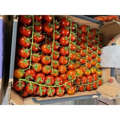 Cherry tomaten 500g